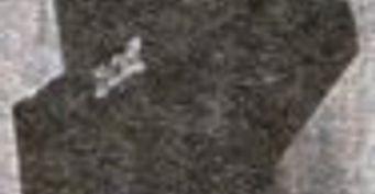 Датчик положения коленчатого вала