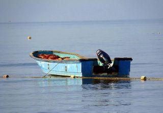 В Челябинской области моторная лодка переехала 28-летнюю девушку