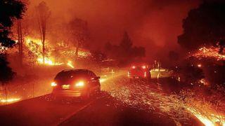 Фото: Пожары вКалифорнии, 24tv.ua