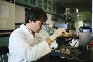 Ученые: Рак может победить сплав лекарства и платины