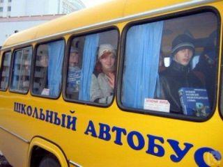 Шестеро детей пострадали в результате столкновения школьного автобуса и грузовика в Красноярском крае