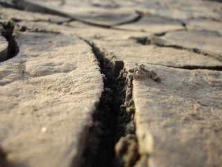Землетрясение магнитудой 5,7 зафиксировано на границе Ирана и Ирака