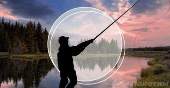 Главные ошибки новичков фидерной ловли: выбор снастей инеправильное закармливание