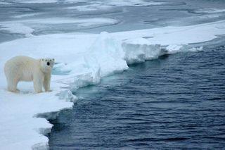 Сотрудники и студенты ТПУ отправятся в Арктику экспедицией