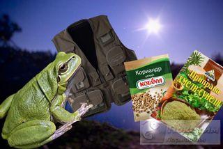 Лягушка иприправы для для «полночного жора» хищников, а«жилетка Вассермана»— выручит любого рыбака