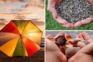 Экосистема ичистота пляжей обходятся дорого. Изображение: Pixabay