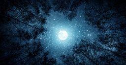 21 июля - ультиматум: Новолуние потребует отказа от важных дел, заявил астролог
