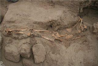 В Самарской области был обнаружен скелет человека