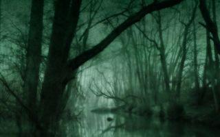 Пенсионера, блуждавшего по лесу 2 дня, нашли на островке среди болота
