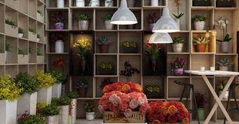 Преимущества сервиса доставки цветов ProFlowers.ua