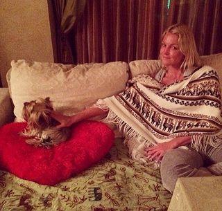 Волочкова сравнила себя со своей собакой Евой