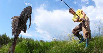 От сельдяного короля до сома-альбиноса: Какую экзотику удавалось поймать рыбакам в России