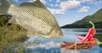 Осенний активатор клева: самодельный аттрактант изприправ для речной рыбы