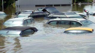 Учёные: Мегаполисы могут быть затоплены к концу 21 века