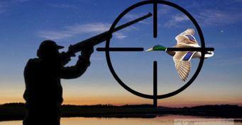 Темнота непомеха: Как подстрелить утку всумерках