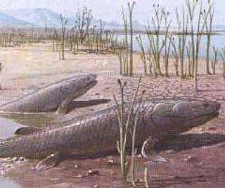Учёные: древние рыбы имели возможность передвигаться по суше