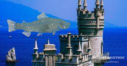 Рыбалка наотдыхе: Что ловится вКрыму сейчас икак найти место клёва