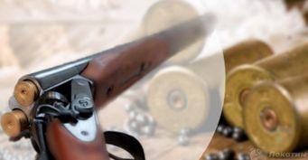 Фавориты среди патронов: чем отличается дробь откартечи