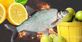 Рецепт на костре: лещ в лимонном маринаде с яблочным соусом