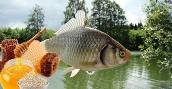 Карасья радость: Самодельная уловистая приманка для речной рыбы