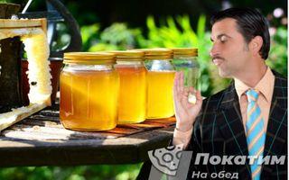 Не ведитесь на чудодейственный мед от всех болезней | Фото: pokatim.ru