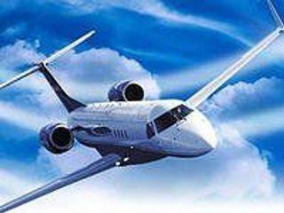 В США самолет совершил аварийную посадку из-за попавшей в двигатель птицы