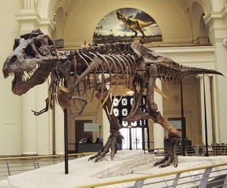 Находка из Сибири в корне изменит представление человека о динозаврах