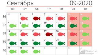 Календарь: автор «Покатим.ру» Алиса Никонорова