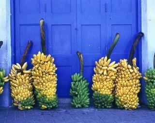 Медики: Бананы – самое доступное средство от похмелья
