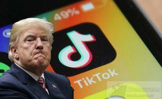 Фото: Трамп не может захватить Tik Tok, pokatim.ru