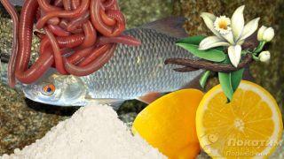 Черви, ваниль, цедра лимона и мука для приготовления прикормки.