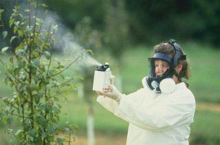 Ученые намереваются получать пестициды из яда пауков