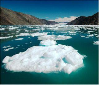 Ученые: температура Земли выросла за сто лет на 0,74°C