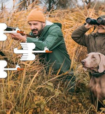 Охота нагуся иутку: Метод маскировки без дорогущих приборов восенний пролёт