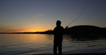Любит «чистоту»: Места обитания судака-отшельника осенью назвал рыбак