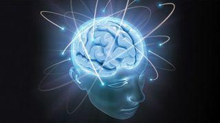 Учёные: При шизофрении развитие мозга происходит неправильно