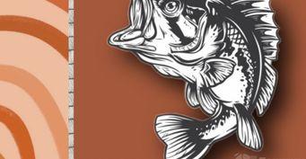 Осенняя рыбалка наокуня, или как ненужно ловить хищника наспиннинг