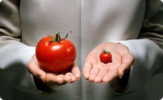 Ученые: Продукты с ГМО спасут всю планету от голода