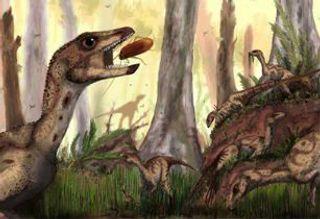 В Венесуэле обнаружен первый скелет динозавтра