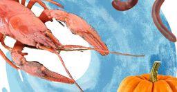 Какие приманки и ловушки использовать для ловли раков, рассказали рыбаки