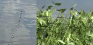 Правильное расположение вершинки удилища слева. Источник изображение: Salapin.ru Рыбалка