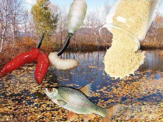 Кормить рыбу молотыми сухарями и опарышами, а искать на водоемах с листвой. Изображение: Елена Лановая