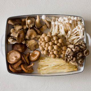 Разные виды грибов, которые можно замариновать\Источник: http://oede.by/