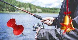 Магнит ифанера: советы для фидерной ловли, которые помогут новичкам иопытным рыбакам