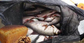 Ореховая приманка на фидер для белой рыбы
