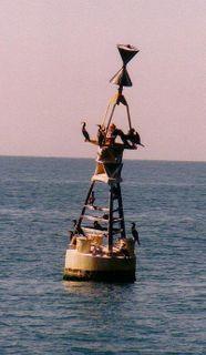 Российские ученые установили два комплекса предупреждения цунами в Тихом океане