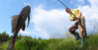 От сельдяного короля до сома-альбиноса: Какую экзотику удавалось поймать рыбакам