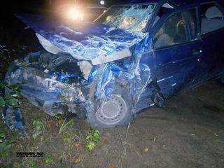 В Карелии водитель убежал с места ДТП в лес