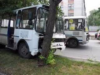 В Пензе маршрутный автобус слетел с горы в дерево, пострадала женщина
