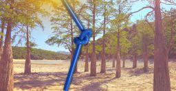Жара на Кубани «высосала» кипарисовое озеро Сукко